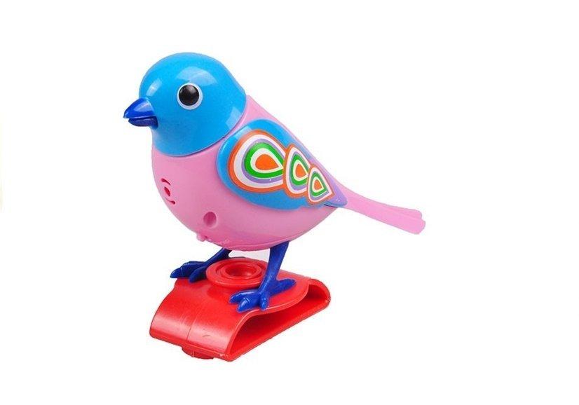 Großartig Blaue Böse Vogel Färbung Seite Galerie ...