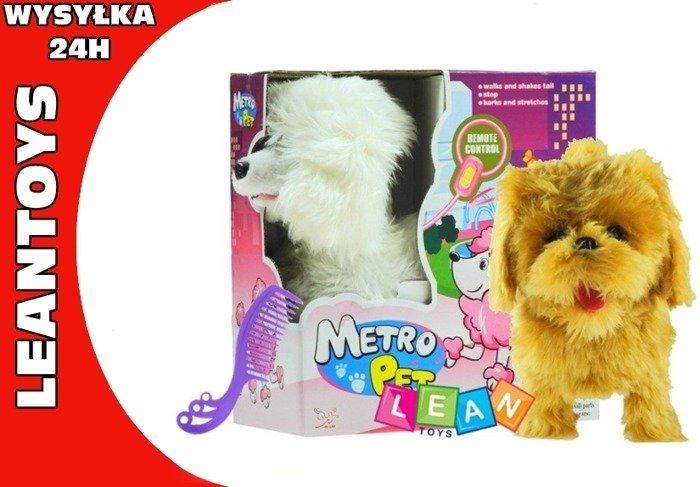 Spielzeughund hund sound farben laufend leine