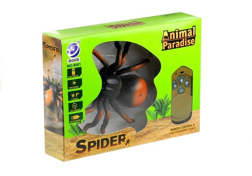 Spiel Spinne